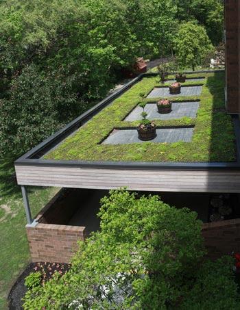 Abbott's Manor Roof